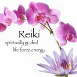 reiki life force