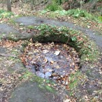 Sacred Well at Dunino